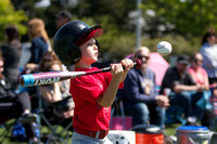 Elk Grove Little League